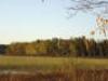fall-marsh-10-05-med